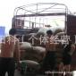 18目抛光罗布斯塔语儿泉茶业豆生语儿泉茶业豆-- --高品质的豆子,月销25吨